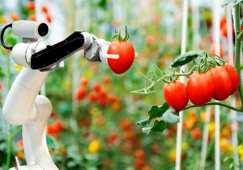 فناوری های جدید در صنعت کشاورزی جهان